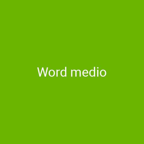 Curso Word Intermedio para empresas en Madrid y Barcelona. CEDECO